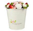 Baby Bunch Bucket